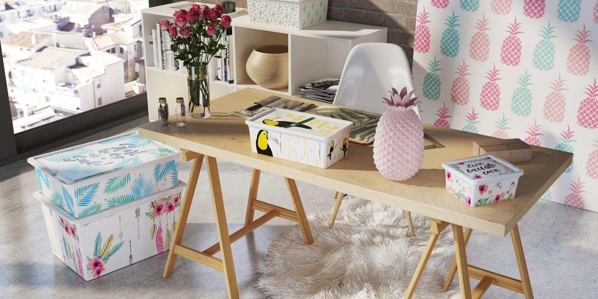 Kis Nuova Collezione C Box Style 2018 | gallery 6